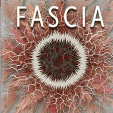 fascia-david-lesondak-9789492995179